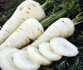 Snow_White_Carrots_Seeds